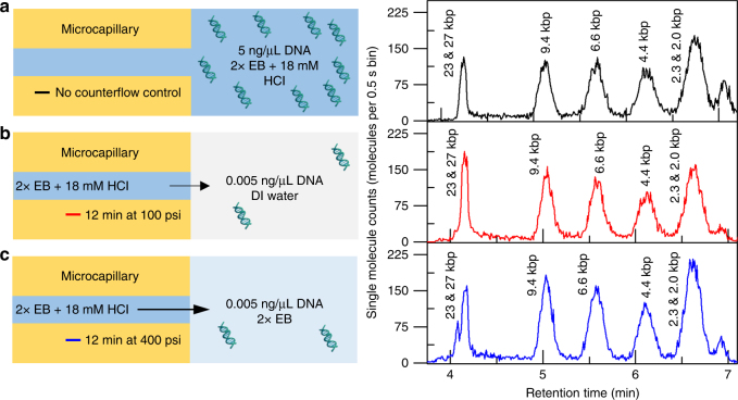 Effect of reservoir buffer solution on MRT preconcentration. A schematic describing the experimental preconcentration conditions is shown on the left, and the single-molecule chromatogram after separation is shown on the right. In all conditions, 2× EB + 18 mM HCl was used as the running buffer. a Control separation of <t>λ</t> DNA Hin <t>dIII</t> digest without preconcentration or a buffer mismatch: the reservoir buffer is the same as the running buffer and no counterflow is applied. b Counterflow at 100 psi for 12 min into reservoir buffer containing Hin dIII digested λ DNA in DI water. The DNA, originally suspended at 0.005 ng/μL concentrates 1000-fold prior to separation. c A similar 1000-fold concentration factor is achieved with the reservoir buffer solutions containing DNA prepared in 2× EB by flowing at a 4-fold higher flow rate (400 psi for 12 min)