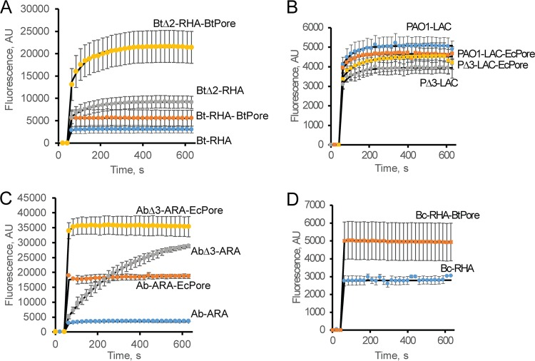 Intracellular uptake of the lipophilic probe NPN in A. baumannii ATCC 17978 and B. thailandensis and their hyperporinated and efflux-deficient derivatives. Data represent real-time kinetics of NPN (6 μM final concentration) uptake in Bt cells (A), P. aeruginosa PAO1 (B), A. baumannii ATCC 17978 (C), and B. cepacia ATCC 25416 (D). In all panels, blue represents parent strains, orange represents hyperporinated parent strains, gray represents efflux-deficient mutants, and yellow represents efflux-deficient hyperporinated strains.