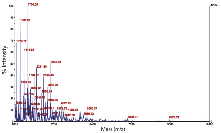 Molecular weight distribution <t>of</t> porcine liver protein hydrolysates produced under the optimal conditions assessed through <t>matrix-assisted</t> <t>laser</t> <t>desorption</t> <t>ionization-time-of-flight</t> <t>mass</t> <t>spectrometry.</t>