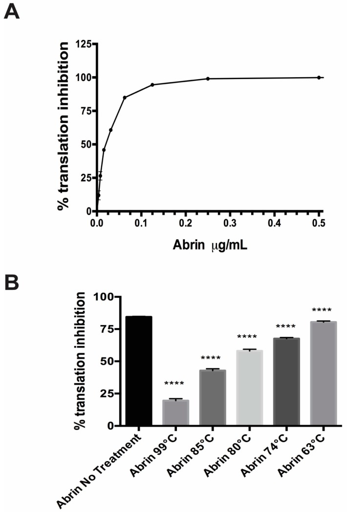 Translation inhibition by the plant toxin Abrin was abrogated by exposure to high temperature. ( A ) A representative standard curve shows increasing translation inhibition until saturation as one increased the abrin concentration in the in vitro cell free translation (CFT) assay run in parallel with the experimental samples shown in ( B ). Values represent means of triplicate samples ± SD. ( B ) Cell free translation assay using a single concentration of toxin (100 ng/mL) for all the different conditions. Increasing the temperature that abrin is exposed to decreases the translational inhibition seen in the CFT assay. Values represent means of triplicate samples ± SD. Statistical significance was determined by two-tailed unpaired Student's t -test, (****) p