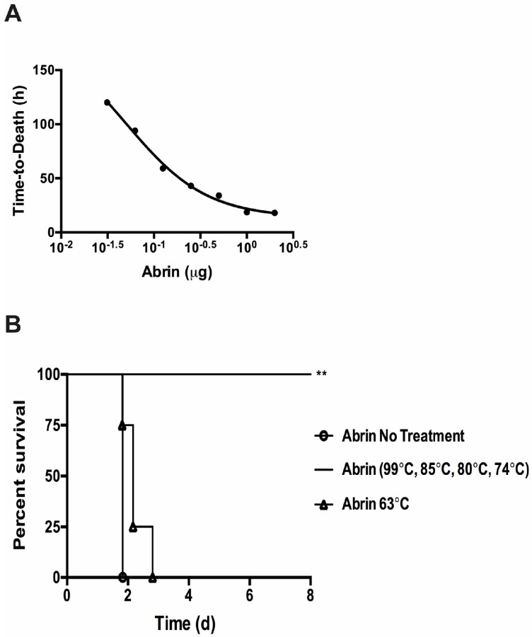 Temperature effects on abrin toxicity in the intravenous mouse bioassay. ( A ) A series of known abrin samples were injected into mice tail vein injection (iv) to derive time-to-death standard curves and LD 50 values. Data was combined from two independent experiments from seven dosage levels consisting of a total of n = 6 to 8 mice per dose. The data was plotted using the log (inhibitor) vs. response (three parameter) curve on GraphPad Prism 6. R 2 = 0.8257; ( B ) Temperature treated toxins were administered to mice iv at a lethal dose of 1 μg per mouse ( n = 4 mice per experimental condition). Mice given abrin treated at 74 °C or higher all survived as compared to the untreated controls (**, p = 0.0082). The time-to-death delay seen from mice given the abrin treated at 63 °C was not statistically significant ( p = 0.1580). Two independent experiments were performed and one representative set of survival curves is shown. Survival curves were plotted for each condition and the log-rank (Mantel–Cox) test was used to evaluate statistical significance on GraphPad Prism 6.