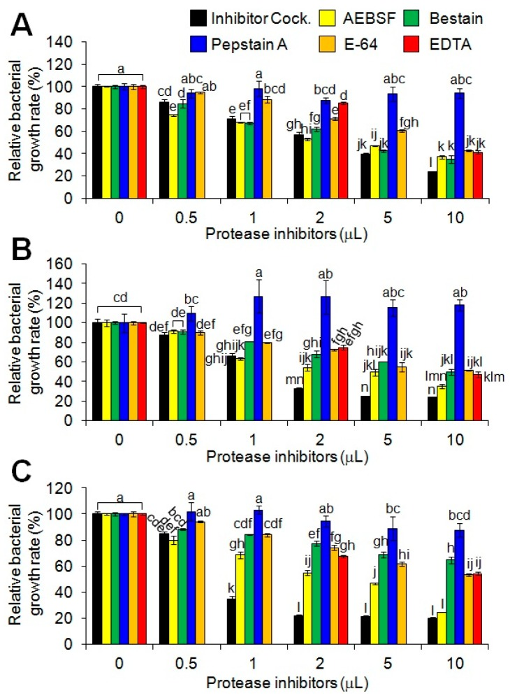 Effect of protease inhibitors on antimicrobial activities of MP-V1 in the increased Salmonella population density. The effect of a protease inhibitor cocktail (Sigma-Aldrich, Milwaukee, WI, USA) and its components (23 mM 4-(2-aminoethyl)benzenesulfonyl fluoride (AEBSF), 2 mM bestatin, 0.3 mM pepstatin A, 0.3 mM E-64 and 100 mM EDTA) on antimicrobial activities was examined using 0.5 to 10 μL doses against 10 8 cfu/mL of Salmonella Enteritidis ( A ); Salmonella Gallinarum ( B ); and Salmonella Typhimurium ( C ). The MP-V1 was used at the MICs determined in 10 6 cfu/mL. Data are means ± SE ( n = 3). Different letters indicate significant differences by the one-way ANOVA/Duncan ( p