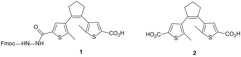 Diarylethene (DAET) building blocks for <t>SPPS:</t> <t>Fmoc-protected</t> amino acid ( 1 ), and a dicarboxylic acid ( 2 ) used to prepare the model compounds studied in this work.