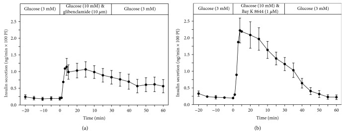 Kinetic profiles of insulin secretion from perifused EndoC- β H1  β -cell pseudoislets in response to a 30min stimulation with glibenclamide (10 μ M) (a) ( n  = 5) as well as with Bay K 8644 (1 μ M) (b) ( n  = 5) in the presence of glucose (10mM) (a) ( n  = 7). After a 20min preperifusion phase with basal glucose (3mM), a 30min stimulation period and thereafter a return of the perifusion to basal glucose medium for another 30min are depicted. Shown are means±SEM of insulin release rates expressed as ng/min and per 100 pseudoislets (PI).