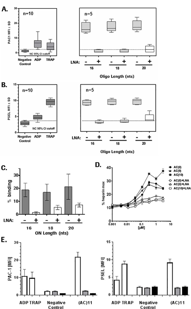LNA wing modifications of PS-ONs strongly suppress platelet activation and binding to GPVI and PF4. Increase in platelet activation marker (A) PAC-1 (Glycoprotein IIb/IIIa) and (B) P-selectin, after 10 min incubation with indicated controls (20 μM ADP, 20 μM TRAP) or 10 μM ONs with different length (16mer (AC)8, 18 mer (AC)9 and 20 mer (AC)10) without and with 3 LNA modifications in the flanks. (A) and (B) are box-plots of n = 5 or n = 10 individual data points as indicated with the bars showing the median value. Dotted lines represent the 95% ULN confidence interval of unstimulated platelets. (C) Binding ONs of different length ((AC)8-10 without and with 3 LNA modifications in the flanks to His -tagged GPVI protein captured on SPR chip via anti-His antibodies. Data are means with error bars demonstrating data range from two replicates. (D) Activity of ONs of different length ((AC)8-10 without and with 3 LNA modifications in the flanks in the PF4 ELISA expressed as % maximal heparin activity. Data represent means ±SD (n = 4). (E) Changes in platelet activation markers PAC-1 and P-selectin induced by controls (ADP, TRAP and negative control (PBS)) or AC11 (white bars) and in the presence of 5 μM Bay 61–3606 (grey bars) or 5 μM Src inhibitor PP2 (black bars). Data are means ±SD (n = 5).