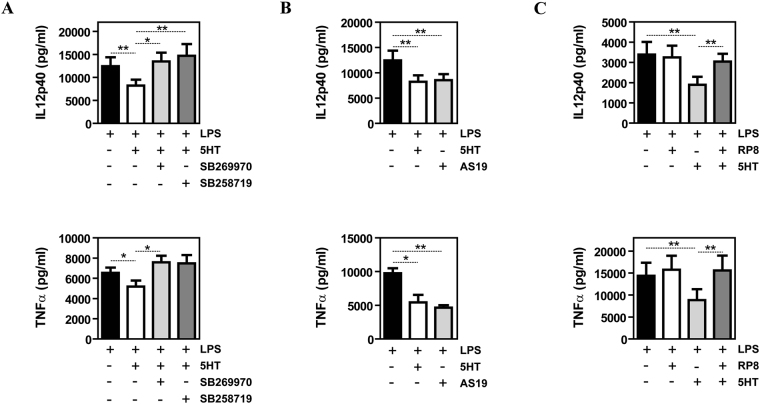 The inhibitory effect of 5-HT on the LPS-induced pro-inflammatory cytokine production of human macrophages is dependent on 5-HT7R and PKA. ( A ) Production of LPS-stimulated IL-12p40 and TNFα by M-MØ non-treated (-) or pretreated with 5-HT (6 h) in the presence or absence of the 5-HT7R antagonists SB269970 or SB258719 (n = 6; *p