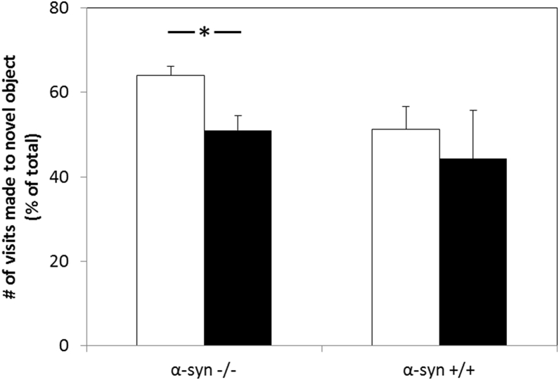 The effects of apoE genotype on performance of α-syn expressing and α-syn–deficient female mice in the novel object recognition test. ApoE3 and apoE4 homozygous female mice that are α-syn–deficient or express normal levels of α-syn were first exposed to two identical objects, followed by a delay of 24 hours, after which the mice were exposed to an old and a new object. The preference of the mice to the different objects was monitored, as described in Section 2 . The results obtained are depicted as the percent of visits made to the novel object out of the total number of visits to both familiar and novel objects. White bars correspond to apoE3 mice, whereas black bars correspond to apoE4 mice (mean ± SEM; n = 10 mice). As seen, the α-syn–deficient apoE4 mice are unable to discriminate between old and novel objects. Abbreviations: apoE, apolipoprotein E; α-syn, α-synuclein; SEM, standard error of the mean. ∗ P