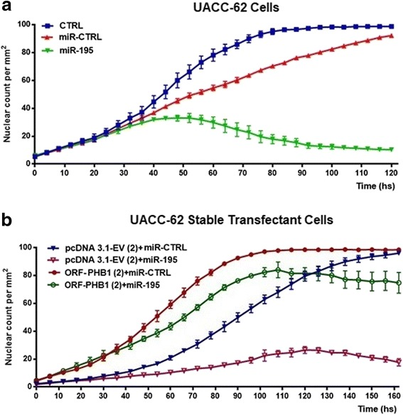 PHB1 overcomes the anti-proliferative effect of miRNA-195. ( a ) Proliferation assay based on nuclear counting per mm 2 . UACC-62 melanoma cells were transfected with either miR-control or miR-195 (25 nM) and observed for five days after transfection. ( b ) To conduct rescue experiments, UACC-62 melanoma cells were stably expressing either ORF-PHB1 or pcDNA3.1-EV. Cells were then transfected with either miRNA-mimics control or miR-195 mimics. After transfection, the proliferation rate was measured for six days and the results showed that cells transfected with transgenic PHB1 overcome the suppressive effect of miR-195 (green line) compared to pcDNA3.1-EV cells (pink line). Representative examples of at least three independent experiments are reported