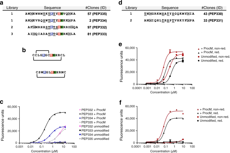 Phage selection outcome and characterization of identified lanthipeptides. a Amino-acid sequences of specific clones selected on uPA. The library in which the clones were found, the number of clones with identical sequences, and a unique clone ID are indicated. Fixed cysteine positions are boxed (gray), putative sites of dehydration (serines and threonines) are underlined, and a conserved three residue motif is highlighted (colored). b Sequence and disulfide pattern of bicyclic and monocyclic uPA-specific peptides described in the literature. c ELISA for uPA binding of purified His 6 -tagged leader-core peptides produced with (+ProcM) or without (unmodified) ProcM co-expression. Data representing mean ± s.d. of three replicates is shown (curve fit with nonlinear regression). d As in a , but amino-acid sequences of specific clones selected on streptavidin are shown. e ELISA for streptavidin binding of purified His 6 -tagged leader-core peptide PEP330 produced with or without ProcM co-expression and analyzed under reducing (red) and non-reducing (non-red.) conditions. f As in e , but binding curves of PEP331 are shown. Experiments shown in c , e , and f were repeated three times