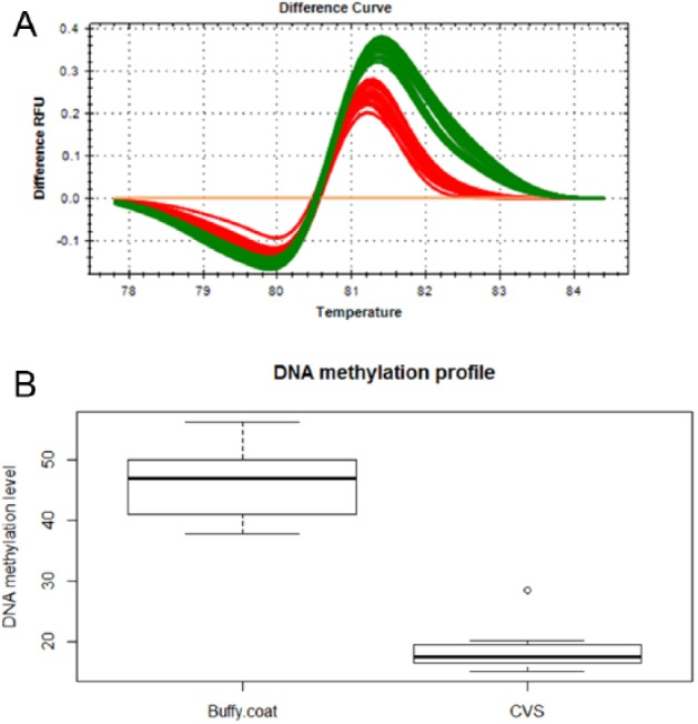 Comparison of DNA methylation profiles of the SEA breakpoint junction. (A) A total of 53 DNA samples from buffy coat and 10 CVS were amplified across the breakpoint region, and then high-resolution melting analysis was performed; the green and red lines show the HRM pattern of buffy coat and CVS, respectively. The yellow line served as a nonmethylated DNA control. (B) The box plot shows the different DNA methylation levels between the 2 types of sample. Statistical analysis comparing sample groups was conducted using a 1-tailed Student t test with unequal variance. The mean was significantly different ( P