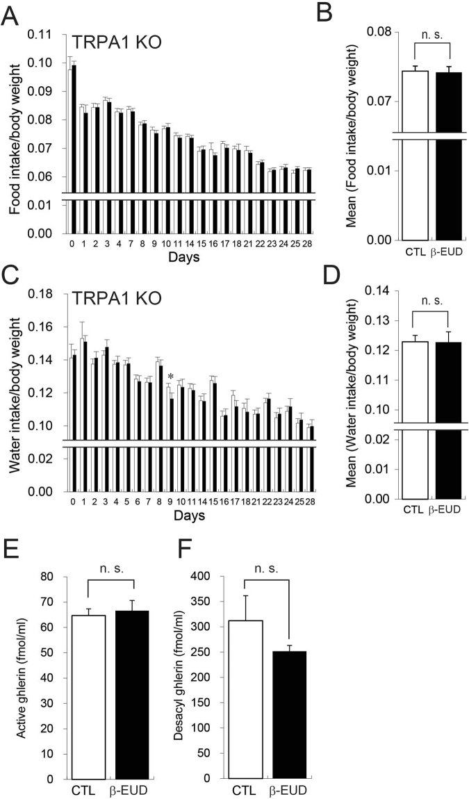 The effects of β-eudesmol on food intake and octanoyl ghrelin in TRPA1 knockout rats. ( A ) Food intake in rats given β-eudesmol (0.14 ppb) containing 0.5% carboxymethylcellulose (CMC) water (n = 17). Food intake in the control, 0.5% CMC water, is shown by a white bar in the graph (n = 19). ( B ) Mean food intake during experimental periods. ( C ) Water intake in rats given β-eudesmol (0.14 ppb) containing water. The control is shown by a white bar in the graph. ( B ) Mean water intake during experimental periods. ( E ) Plasma octanoyl ghrelin levels in β-eudesmol administered rats. ( F ) Plasma desacyl ghrelin levels in β-eudesmol administered rats. Values are means ± SEM. Statistical differences were analyzed using the Mann-Whitney U test. CTL, control; β -EUD, β-eudesmol; n. s., not significant.