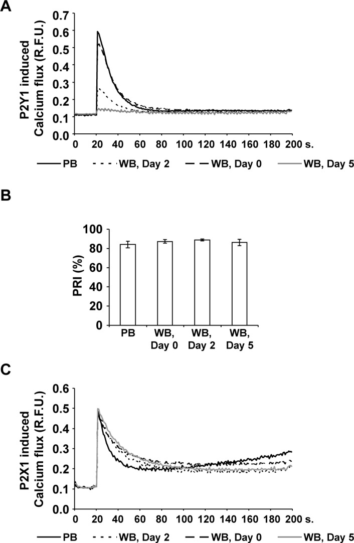 The activity of platelet P2Y1, but not of P2X1 or P2Y12 receptor, continually decreases in citrated WB. Calcium induced fluorescence curves were generated with Fluo-4AM loaded freshly washed platelets from PB samples (black line) and from WB units on Day 0 (dashed line), on Day 2 (dotted line) and on Day 5 (gray line) after stimulation with the P2Y1 agonist MRS2365 (A) or the P2X1 agonist α,β-MeATP (C). Mean fluorescence curves are presented (expressed in relative fluorescence units, R.F.U.); n = 6. For the P2Y12 receptor activity, mean PRI values (B) were determined in PB samples and in stored WB units at different time points as indicated. Results are presented as mean % (PRI) ± SEM; n = 4.