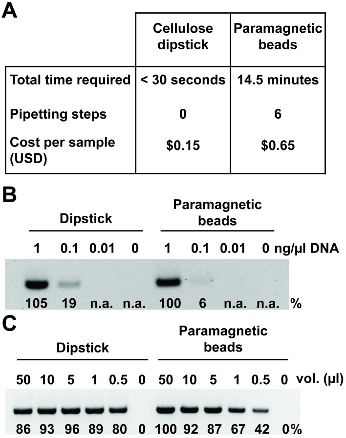 Cellulose dipsticks outperform a commercially available nucleic acid purification system. (A) The time required, number of pipetting steps involved, and the costs of all consumables—including tubes and pipette tips—were calculated for purification of nucleic acids from Arabidopsis leaf tissue using either the cellulose dipstick or Agencourt AMPure paramagnetic beads. All solutions that could be prepared in advance, including lysis and wash buffers, were made and prealiquoted. The time and pipetting involved in the preparation of these solutions was not added to the tallies in the table. (B) Purified Arabidopsis DNA at different concentrations was a captured, washed, and eluted using either the cellulose dipsticks or AMPure paramagnetic beads (Beckman Coulter). The eluted DNA was used in a PCR reaction with using primers designed for the G-protein gamma subunit 1 gene. The band intensities relative to the 1 ng/μl paramagnetic bead sample appear below each band. (C) Different volumes of an Arabidopsis leaf extract were captured, washed, and eluted using either the cellulose dipsticks or AMPure paramagnetic beads and subsequently amplified in a PCR reaction as described above. The band intensities relative to the 50 μl paramagnetic bead sample appear below each band. n.a., no amplification; USD, United States Dollar.