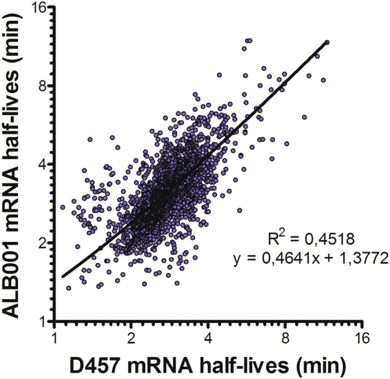 Comparison of mRNAs half-lives in S. maltophilia strains D457 and ALB001. Messenger RNA half-lives determined by RNA-Seq Illumina 1.9 in S. maltophilia strains D457 and ALB001 were correlated between them. Half-lives are shown at log scale.