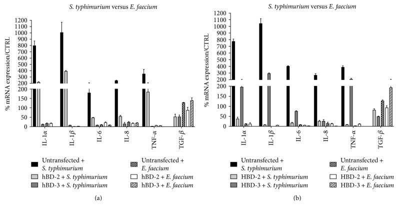 Comparison between relative gene expression (a) and protein concentration (b) in Caco-2 cells infected with S. typhimurium and Caco-2 cells infected with E. faecium . Data are mean ± SD and are expressed as the percentage of increment compared to uninfected controls.
