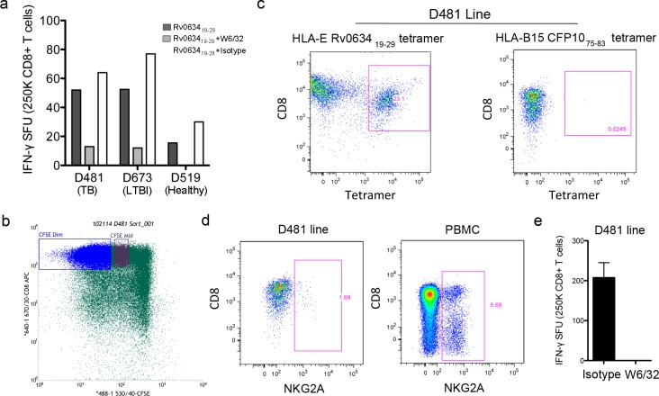 The CD8 + T cell response to Rv0634A 19-29 is restricted by HLA-E. A) A549 cells were pulsed with the Rv0634 19-29 peptide and used as antigen presenting cells in an ELISPOT assay with IFN-γ production by CD8 + T cells from mismatched donors as a readout. B-D) D481 CFSE-labeled CD8+ T cells were isolated and cultured with Rv0634A 19-29 peptide-pulsed autologous macrophages and DC. CFSE-dim cells were sorted and stained with the Rv0634A 19-29 HLA-E tetramer and antibodies against CD3 and CD8. As a control, the D481 line was also stained with a non-HLA-E tetramer (C), or with anti-NKG2A (D) do demonstrate that the tetramer staining is specific. Whole PBMC were stained with the anti-NKG2A antibody as a positive control. E) The mismatched A549 cell line was pulsed with the Rv0634A 19-29 peptide and used as antigen presenting cells with D481 CD8 + T cell line.
