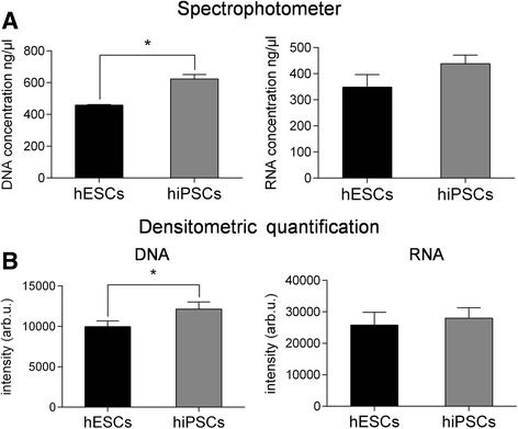 Quantification of nucleic acid levels. DNA and RNA extracted from both pluripotent stem cell lines were quantified with a NanoDrop 2000 UV-Vis spectrophotometer ( a ) and with ethidium bromide staining on agarose gel electrophoresis ( b ). Error bars indicate mean ± SEM. Statistical comparison between hiPSCs and hESCs by paired Student's t test (* p