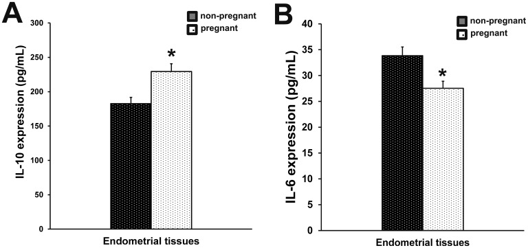 Production of IL-10 and IL-6 in endometrial tissues IL-10 (A) and IL-6 (B) expression in endometrial tissues of pregnant and non-pregnant cows was measured by ELISA. Columns represent the means. Bars represent the S.E. * P