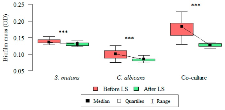 S. mutans , C. albicans , and oral streptococci/yeast biofilm formation: changes in optical density (OD) of biofilm mass, before and after administration of Lactobacillus salivarius (HM6 Paradens) after 24 h. Wilcoxon's test was used for dependent (repeated) measurements (paired Wilcoxon's test; p