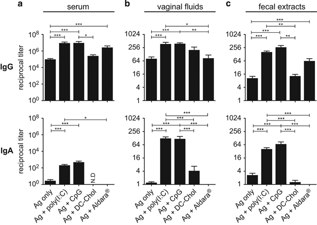 Adjuvants promoting mucosal Abs to HIV-1 gp140 after ID vaccination. HIV-1 gp140 IgG and IgA were titrated at day 28 in serum ( a ), vaginal fluids ( b ) and fecal extracts ( c ) from mice immunised ID with gp140 alone or in the presence of either Poly(I:C), CpG, DC-Chol or Imiquimod (Aldara). Results are expressed as mean+s.e.m. of Ab titers from pooled experiments representing a total of 12 (DC-chol, Aldara), 20 (CpG) and 80 (gp140 alone, gp140+Poly(I:C)) mice. Statistics using the Kruskall–Wallis test and Dunn's multiple comparisons.