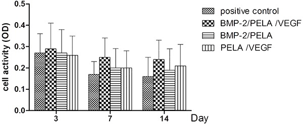 Results of the MTT assay after incubation of cells with PELA scaffolds. Cells cultured in the absence of scaffolds served as the positive control. Data are reported as means±SD. BMP-2: bone morphogenetic protein-2; PELA: polylactide-poly (ethylene glycol)-polylactide; VEGF: vascular endothelial growth factor.