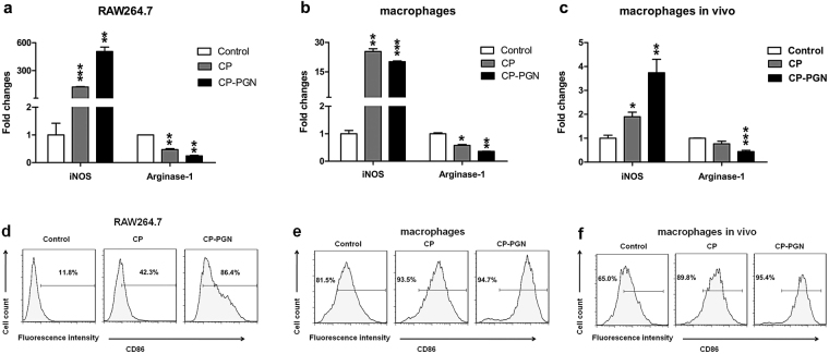 CP and CP-PGN skewed macrophages to a M1-like type. RAW264.7 cells ( a,d ) and peritoneal macrophages ( b,e ) were co-cultured with CP or CP-PGN ex vivo to detect the iNOS and arginase-1 by qRT-PCR and CD86 by Flow cytometric analysis. Macrophages pretreated with CP or CP-PGN for 24 h in vivo ( c,f ) were collected from the abdominal cavity of mice to analyzed iNOS, arginase-1 and CD86. Data shown are representative of three independent experiments. The significant differences compared with the control group were analyzed by Student's t test, * P