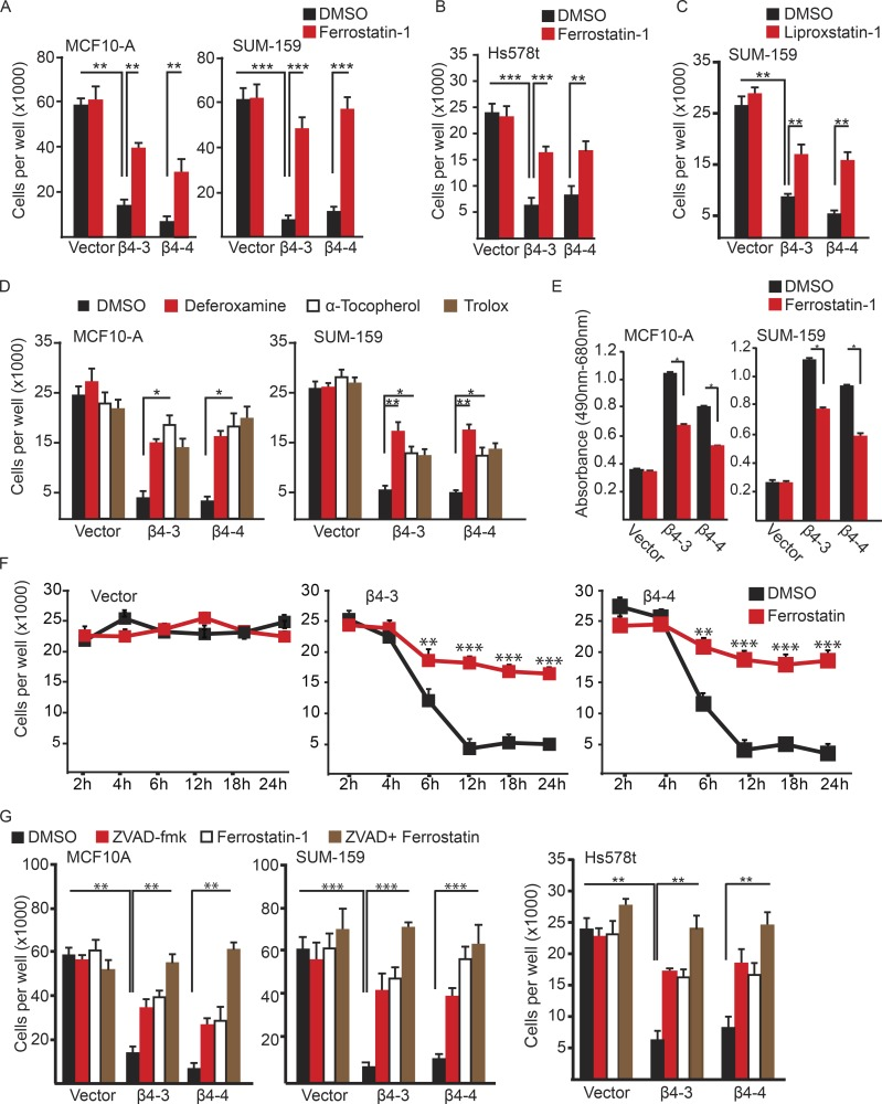 Matrix-deprived cells are susceptible to ferroptosis in the absence of the <t>α6β4-integrin.</t> (A) Control and <t>β4-depleted</t> cells were detached for 24 h in the presence of either DMSO or 2 µM ferrostatin-1, and the number of viable cells was quantified. (B) Control and β4-depleted Hs578t cells were detached for 24 h in the presence of either DMSO or 2 µM ferrostatin-1, and the number of viable cells was quantified. (C) Control and β4-depleted SUM-159 cells were detached for 24 h in the presence of either DMSO or 2 µM liproxstatin-1, and the number of viable cells was quantified. (D) Control and β4-depleted MCF-10A and SUM-159 cells were detached for 24 h in the presence of either DMSO, 100 µM DFO, 100 µM α-tocopherol, or 500 µM Trolox, and the number of viable cells was quantified. (E) MCF10-A or SUM-159 vector control and β4-depleted cells were assayed for LDH after 6 h of detachment with either DMSO or 2 µM ferrostatin-1. (F) Vector and β4-depleted cells were incubated for the times indicated with either DMSO or 2 µM ferrostatin-1, and viable cells were quantified. (G) Vector and β4-depleted cells were detached for 24 h in the presence of either DMSO, 2 µM ferrostatin-1, 25 µM Z-VAD-FMK, or ferrostatin-1 and Z-VAD-FMK, and the number of viable cells was quantified. All experiments were performed independently three times and a representative experiment is shown. The bars in graphs represent means ± SD. *, P