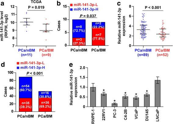 miR-141-3p is downregulated in bone metastatic PCa tissues and cells. a miR-141-3p expression levels was decreased in bone metastatic PCa tissues (PCa/BM) compared with that in non-bone metastatic PCa tissues (PCa/nBM) as assessed by analyzing the TCGA PCa miRNA sequencing dataset (PCa/nBM, n = 11; PCa/BM, n = 9). b Percentages and number of samples showed high or low miR-141-3p expression in bone metastatic and non-bone metastatic PCa tissues in PCa dataset from TCGA. c Real-time PCR analysis of miR-141-3p expression in 89 non-bone metastatic and 52 bone metastatic PCa samples. Transcript levels were normalized to U6 expression. d Percentages and number of samples showed high or low miR-141-3p expression in bone metastatic and non-bone metastatic PCa tissues in our PCa tissues. e Real-time PCR analysis of miR-141-3p expression levels in normal prostate epithelial cell (RWPE-1), primary PCa cell 22RV1, bone metastatic PCa cell lines (PC-3, C4-2B and VCaP) and brain metastatic cell line DU145 and lymph node metastatic cell line LNCaP. Transcript levels were normalized to U6 expression. * P