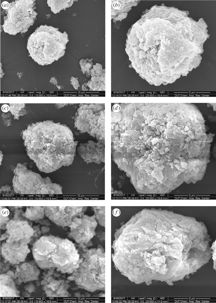 SEM images of Ca-magadiite–calcein ( a , b ), Zn-magadiite–calcein ( c , d ) and Al-magadiite–calcein ( e , f ).