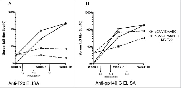 A-B. Anti-gp140 (C) and anti-T20 antibody titers following immunizations with pCMV-EnvABC with and without MC-T20 . Five mice in each group were immunized with pCMV-EnvABC (20 µg) with MC-T20 (20 µg); or pCMV-EnvABC (20 µg) with pCMV-DNA (20 µg). Sera were taken and antibodies against gp140 C and T20 peptide measured by ELISA. (See also Table S1, Group II.)