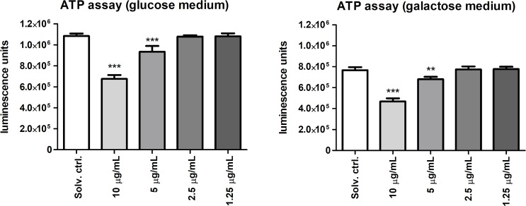 Quantification of ATP levels using selective media conditions. ATP levels were measured in HT-29 cells cultured in glucose (25 mM) and galactose (10 mM) conditioned media, which are known as a cellular switch, where cells either rely on glycolysis and oxidative phosphorylation or solely on oxidative phosphorylation, respectively. Results are expressed in luminescence units, and statistically significant differences between the solvent control and the treatment groups are indicated by asterisks (One-Way ANOVA, Dunnett's test, ** = p