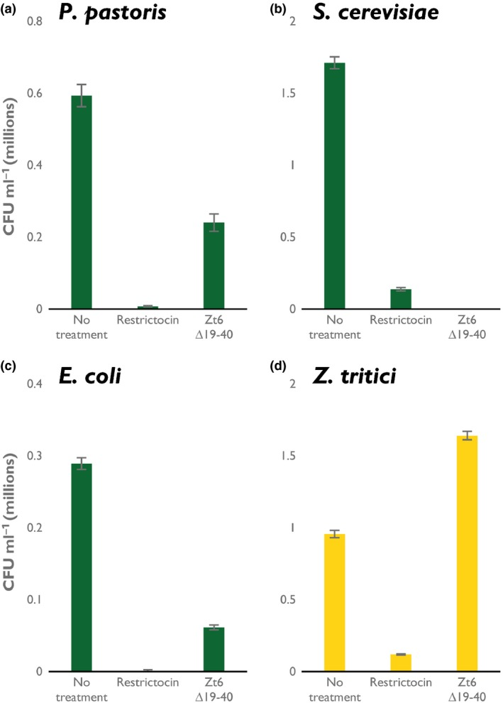 Zt6 is toxic to bacteria and yeasts, but not to Zymoseptoria tritici . Recombinant Zt6 ∆19–40 and the ribotoxin restrictocin incubated with (a) Pichia pastoris , (b) Saccharomyces cerevisiae , (c) Escherichia coli and (d) Z. tritici at 20 μM concentration. Bars represent mean ± SE .