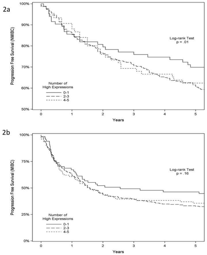 Progression-free survival analysis of 939 patients with bladder cancer Progression-free survival according to immunostaining status of ANG, MMP-2, p53, RB and PAI-1 in NMIBC (A) and MIBC (B) .