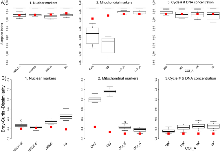( A ) Alpha diversity (Simpson Index) of arthropod mock communities. The upper black bar shows the median alpha diversity of the actual communities based on morphospecies assignments. The boxplots show alpha diversity for the same communities based on DNA sequencing for 1. nuclear and 2. mitochondrial markers, and 3. for mitochondrial COI at varying PCR cycle numbers and increased DNA template amount during PCR. Red squares indicate alpha diversity for the same loci based on a genomic DNA sample prepared without locus specific amplification. ( B ) Beta diversity (Bray Curtis dissimilarity) between actual morphospecies based mock communities and sequence based analyses. The boxplots and red present the same experimental conditions as described above. Red squares indicate beta diversity for the same loci and based on a genomic DNA sample prepared without locus specific amplification.