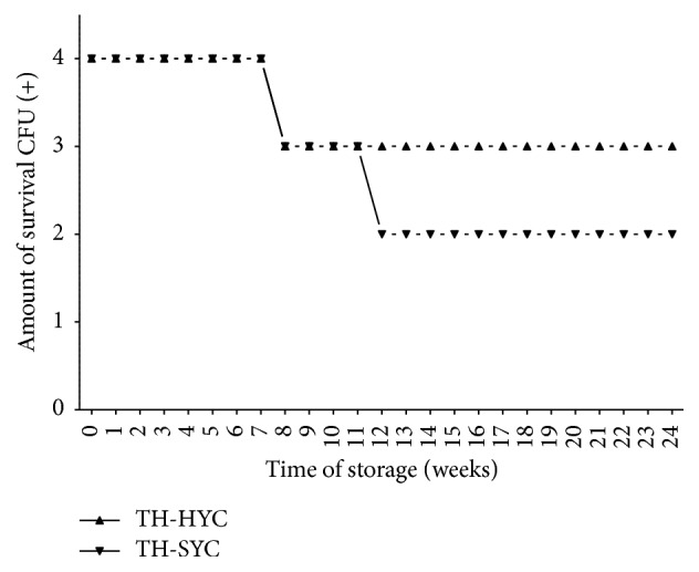 Pneumococcal survival-time curves based on the number of viable CFU of S. pneumoniae ATCC 49619 stored on TH-HYC and TH-SYC agar, along the pilot study. CFU (+): the number of CFU was expressed as crosses of growth in the recovery plate. TH-HYC: Todd-Hewitt/Hemoglobin/Yeast/Charcoal. TH-SYC: Todd-Hewitt/Skim-Milk/Yeast/Charcoal.