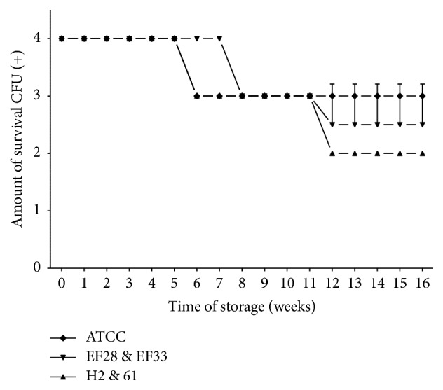 Pneumococcal survival-time curves based on the means and standard deviation of CFU of clinical isolates group (H2 and 61), nasopharyngeal isolates group (EF28 and EF33), and S. pneumoniae ATCC 49619 strain stored on TH-SYC agar, along test 2. CFU (+): the number of CFU was expressed as crosses of growth in the recovery plate. TH-SYC: Todd-Hewitt/Skim-Milk/Yeast/Charcoal.