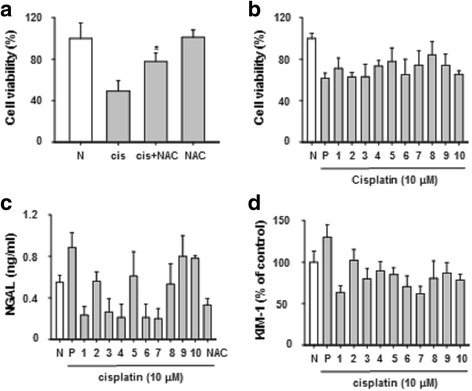 Herbal medicines regulated NGAL and KIM-1 biomarkers. Pretreatment with NAC 10 mM for 1 h and stimulated with cisplatin (10 μM) for 24 h ( a ). Cytotoxicity was measured by MTT assay treatment with herbal medicine and cisplatin for 24 h ( b ). NGAL and KIM-1 were measured by ELISA ( c and d ). Lane 1:; Artemisia capillaris , Lane 2:; Houttuynia cordata , Lane 3:; Leonurus japonicas , Lane 4:; Nelumbo nymphaea , Lane 5:; Schisandra chinensis , Lane 6:; Akebia quinata , Lane 7:; Ligustrum japonicus , Lane 8:; Paeonia suffruticosa , Lane 9:; Phellodendron amurense , Lane 10:; Trichosanthes kirilowii . The statistical significance (* p