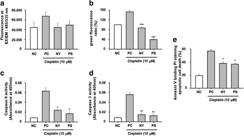 Antioxidant effect of NY and PS on <t>cisplatin-induced</t> cell death in HK-2 cells. Cells were treated with 10 μM cisplatin for 30 m and the level of ROS was detected by microplate reader ( a ). Cells were exposed to cisplatin for 24 h with or without PS or NY ( b ). The measures of JC-1 fluorescence intensity ( c and d ). Cells were treated to bind Annexin V and then to undergo PI staining; exposed to cisplatin for 24 h with or without PS or NY. HK-2 cells were treated with cisplatin for 24 h to measure apoptosis ( e ). Cell lysates were assayed for caspase-9, 3 activity. The statistical significance (* p