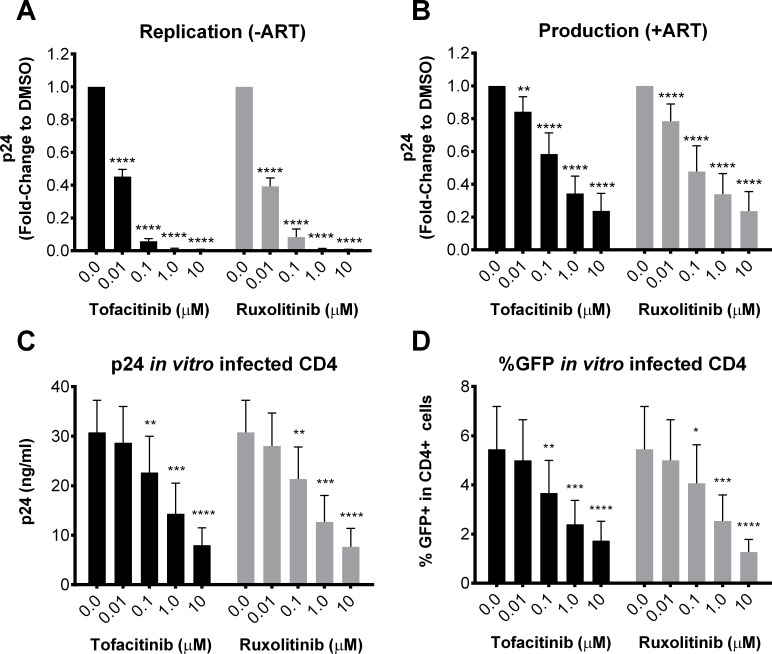 Jak inhibitors block HIV-1 replication and production ex vivo and in vitro . Viral production was measured by ELISA p24 in cell-free supernatants of enriched CD4 + T cells isolated from 5 viremic donors and stimulated for 6 days with anti-CD3/28 in the presence of increasing concentrations of Jak inhibitors without (A) or with (B) ART. Viral production was measured by ELISA p24 in cell-free supernatants of in vitro infected CD4 + cells after 6 days culture in the presence of increasing concentrations of Jak inhibitors (C) and by the frequency of HIV-GFP+ expressing CD4+ cells after 3 day culture (D). To account for inter-patient variability in baseline values, results are reported as the fold change versus DMSO controls. 0.0 μM represents the average of all assays completed using % DMSO equivalent to Jak inhibitor concentrations. Error bars represent S.E.M. and statistical significance determined by two-way ANOVA followed by Sidak's multiple comparison post-test: *p