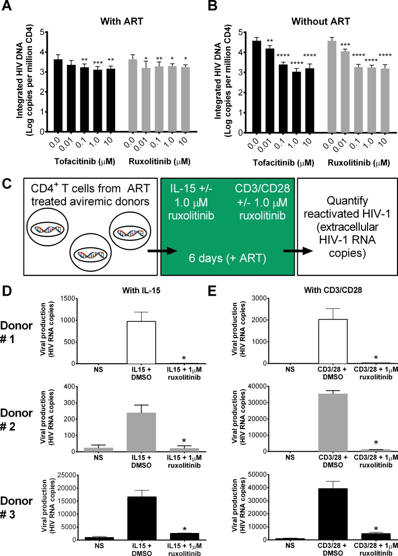 Jak inhibitors reduce frequency of cells harboring integrated viral DNA and IL-15-induced reactivation of latent HIV-1 in CD4 T cells. CD4 T cells were isolated from viremic donors and incubated with CD3/CD28 plus 0.01, 0.1, 1.0 or 10 μM of Jak inhibitors with or without EC 99 of ART (180 nM zidovudine, 100 nM efavirenz, 200 nM Raltegravir) (A and B). After six days, integrated viral DNA was quantified using ultra sensitive Alu PCR versus DMSO controls (n = 5). 0.0 μM represents the average of all assays completed using % DMSO equivalent to Jak inhibitor concentrations. Error bars represent S.E.M. and statistical significance determined by two-way ANOVA followed by Sidak's multiple comparison post-test: *p