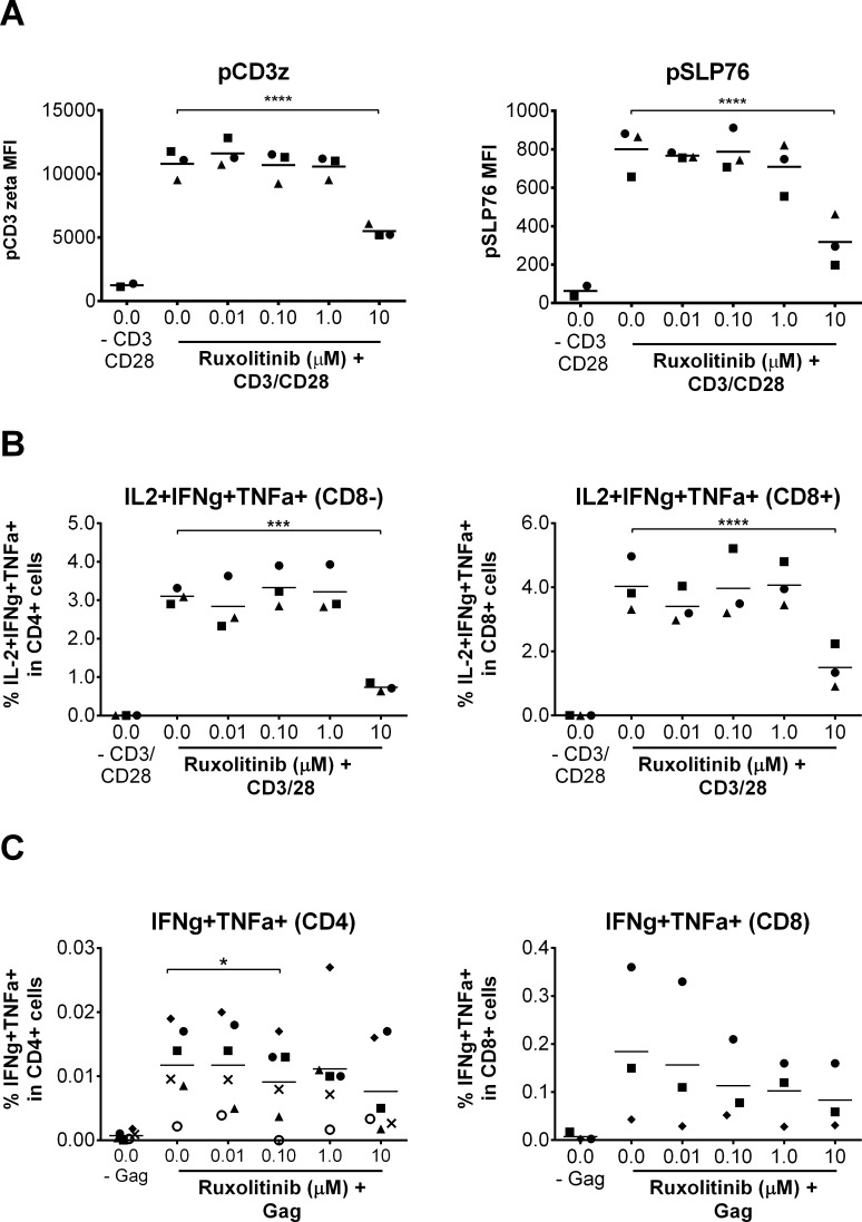 Ruxolitinib does not inhibit normal TCR function and signaling that is independent of HIV-1 infection. (A) Mean CD3 zeta and SLP76 phosphorylation (MFI in CD4 cells) as quantified by flow cytometry in CD4 + cells isolated from HIV negative donors and stimulated with anti-CD3/CD28 in the presence of increasing concentrations of Ruxoltinib versus DMSO treated control cells (n = 3). Statistical significance was determined by an upaired t-test corrected for multiple comparisons using the Holm-Sidak method. (B) Mean cytokine production (% of IL-2 + , TNF-α + and IFN-γ + triple positive cells) in CD3+CD8- cells or CD3+CD8+ cells as measured by flow cytometry in PBMC isolated from HIV negative donors and stimulated for 6 hr with aCD3/CD28, Brefeldin A (5 μg/ml) and increasing concentrations of Ruxoltinib versus DMSO treated cells (n = 3). Statistical significance for (B) determined by two-way ANOVA followed by Sidak's multiple comparison post-test: *p
