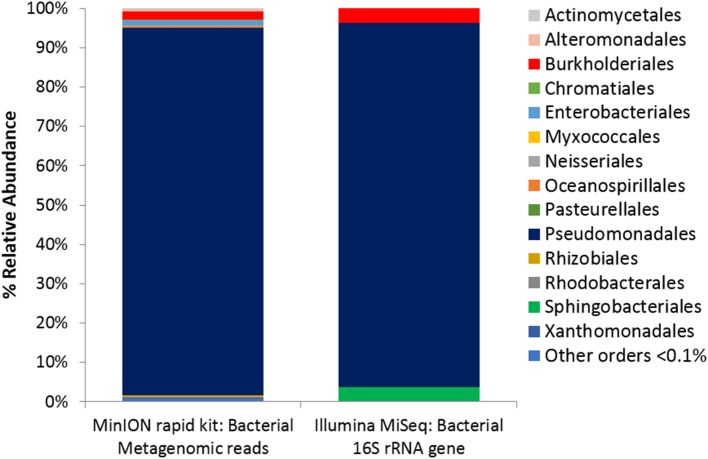 Microbial Activity Microassay (Ecolog plate) Bacterial diversity. Bacterial reads from Ecolog metagenome sequenced using the MinION rapid kit compared with Bacterial composition inferred from amplicon sequencing of 16S rRNA gene.