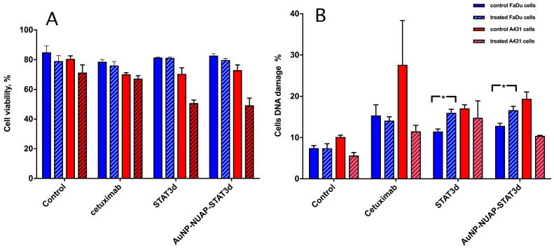 The effect of RT on viability (A) of A431 (blue bars) and FaDu cells (red bars) and genomic DNA damage (B) pre- (solid bars) and post- (hatched bars) radiation treatment. Both viability and the damage to DNA were determined by using flow cytometry. Control cells (no pre-incubation), or experimental cells incubated with 1) Cetuximab (control as a standard immunotherapy for head and neck cancer), 2) STAT3d or 3) AuNP-NUAP-STAT3d for 20h and then either mock-irradiated or irradiated with a single dose of 4Gy. Staining performed with FITC- labeled rabbit polyclonal anti- γ-H2AX antibodies and analyzed by FACS. * - Indicates statistical significance, p