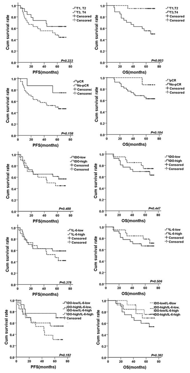 The survival curves for breast cancer patients treated by neoadjuvant chemotherapy The survival curves for PFS and OS according to different clinical T stage, pCR, IDO expression, IL-6 expression, IDO/IL-6 co-expression were shown.
