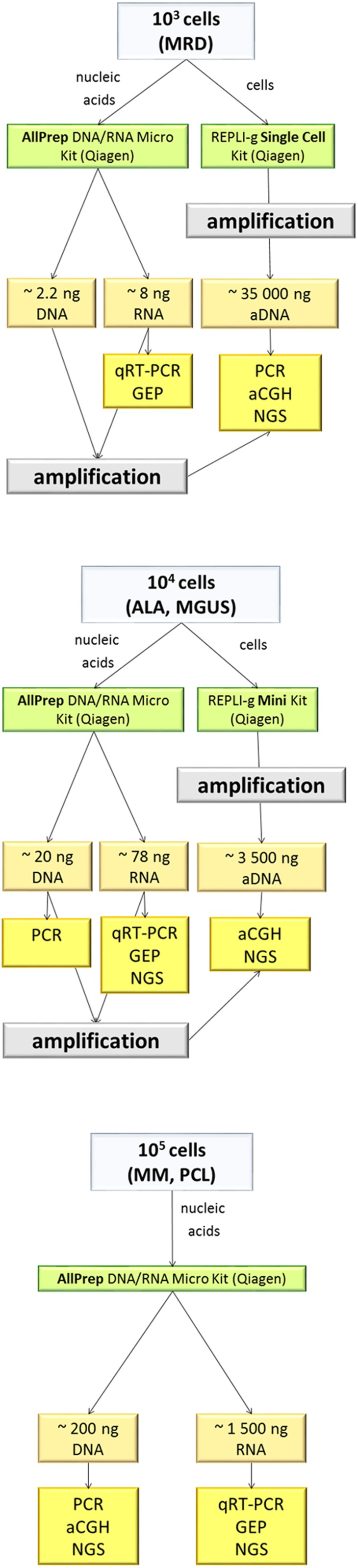 Diagram of preprocessing of samples with small amounts of input material. For a typical number of aberrant cells in various monoclonal gammopathies (MGs), we suggest nucleic acid isolation strategies and expected yield and suitability for downstream applications. For the isolation of nucleic acids with ≤10 5 cells, the most efficient isolation kit was the AllPrep DNA/RNA Micro Kit. For less starting material or for improved DNA yield for next generation sequencing (NGS), amplification by REPLI-g Single Cell of REPLI-g Mini Kit is recommended. aDNA, amplified genomic DNA; ALA, light chain amyloidosis; CGH, comparative genomic hybridisation; MGUS, monoclonal gammopathy of undetermined significance; MM, multiple myeloma; MRD, minimal residual disease; PCL, plasma cell leukaemia.