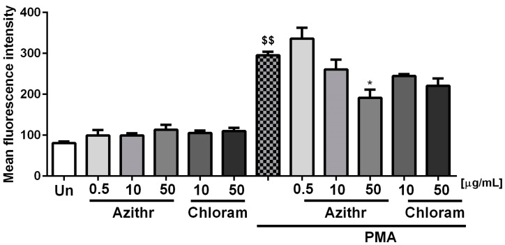 Effect of azithromycin and chloramphenicol on respiratory burst ( n  = 6), $$  p  ≤ 0.01 vs. unstimulated cells (Un), *  p  ≤ 0.05 vs. phorbol 12-myristate 13-acetate (PMA).