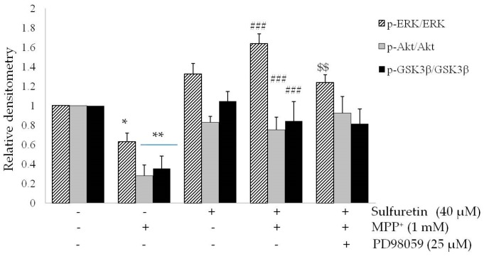 PD98059 suppresses sulfuretin-induced protection against MPP + . SH-SY5Y cells were pretreated with or without PD98059 (10 μM) for 2 h, followed by treatment with or without sulfuretin (40 μM) for 2 h, and exposed to MPP + (1 mM) for 24 h. ( A ) Cell viability was measured by MTT assay. Values are presented relative to control as mean percentage change ± S.D. ( n = 3). ( B ) Protein levels of p-ERK, ERK, p-Akt, Akt, p-GSK3β, GSK3β, and GAPDH were determined by Western blot analysis. Representative blots and their densitometric quantification are shown. Values are presented relative to control as mean fold change ± S.D. ( n = 3). Differences are statistically significant at * p