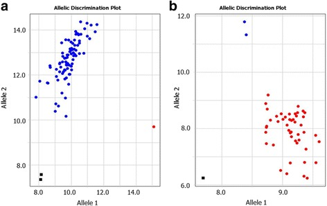 Examples of rare SNP alleles in bread wheat and barley originated from Kazakhstan. a Rare SNP allele 1 in the collection of Kazakh wheat (labelled with FAM). b Results of the discrimination of rare SNP allele 2 (labelled with VIC) in the Kazakh barley collection. X- and Y-axes show Relative amplification units, ΔRn, for FAM and VIC fluorescence signals, respectively, as determined by the qPCR instrument
