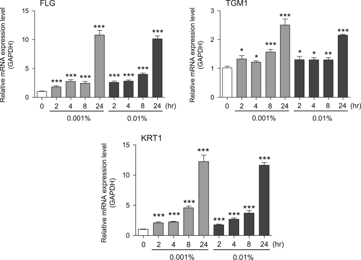 Gene expression levels in <t>keratinocyte</t> cells after exposure to neem extract. The mRNA expression levels were normalized to GAPDH expression, and the relative gene expression levels in the cells at 2, 4, 8, and 24 h after initiation of extract exposure were compared to the corresponding levels for unexposed cells, whose levels were defined as 1.0.