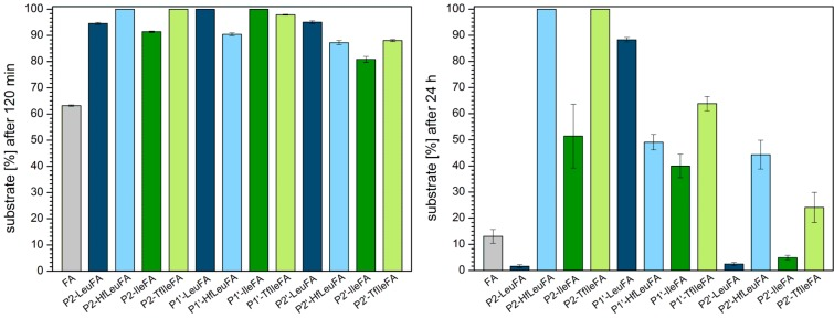 Percentage of substrate remaining after incubation for 120 min (left) and 24 h (right) with α - chymotrypsin in 10 mM phosphate buffer, pH 7.4, at 30 °C. The data shown represent the average of three independent measurements. Errors are derived from the standard deviation.